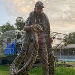 17-foot python captured in Florida Everglades